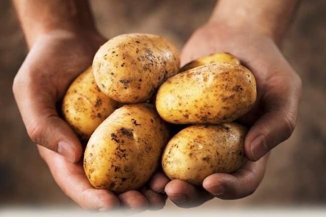 Картошка фри. Рецепт приготовления