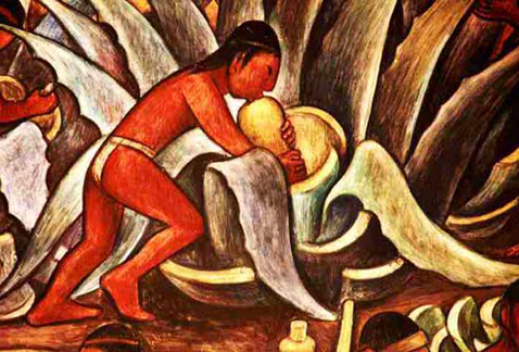 Текила – история появления и сорта